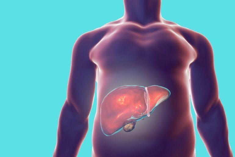Imagem ilustrativa do sexo masculino com o fígado em evidência.