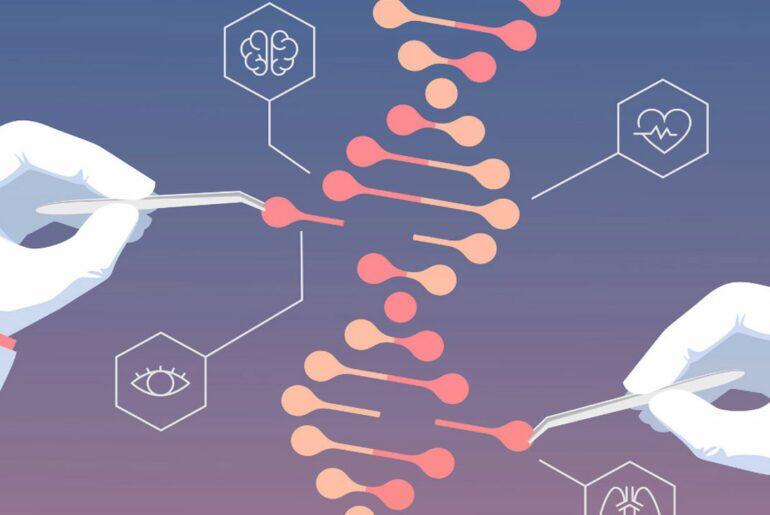 Imagem ilustrativo sobre predisposição genética.